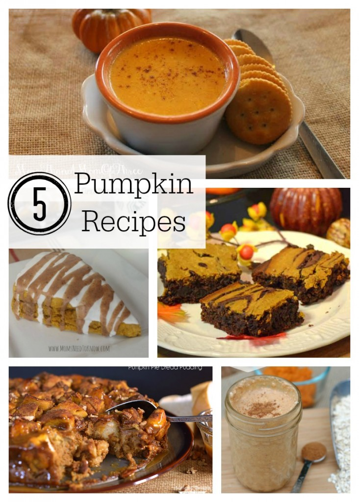 5 Pumpkin Recipes & The Project Stash
