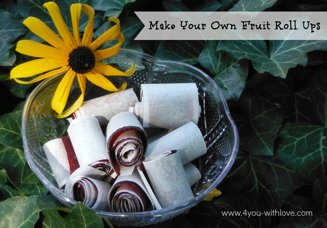 Party Thyme, Preserving the Summer – Make Your Own Fruit Leather/Fruit Roll Ups