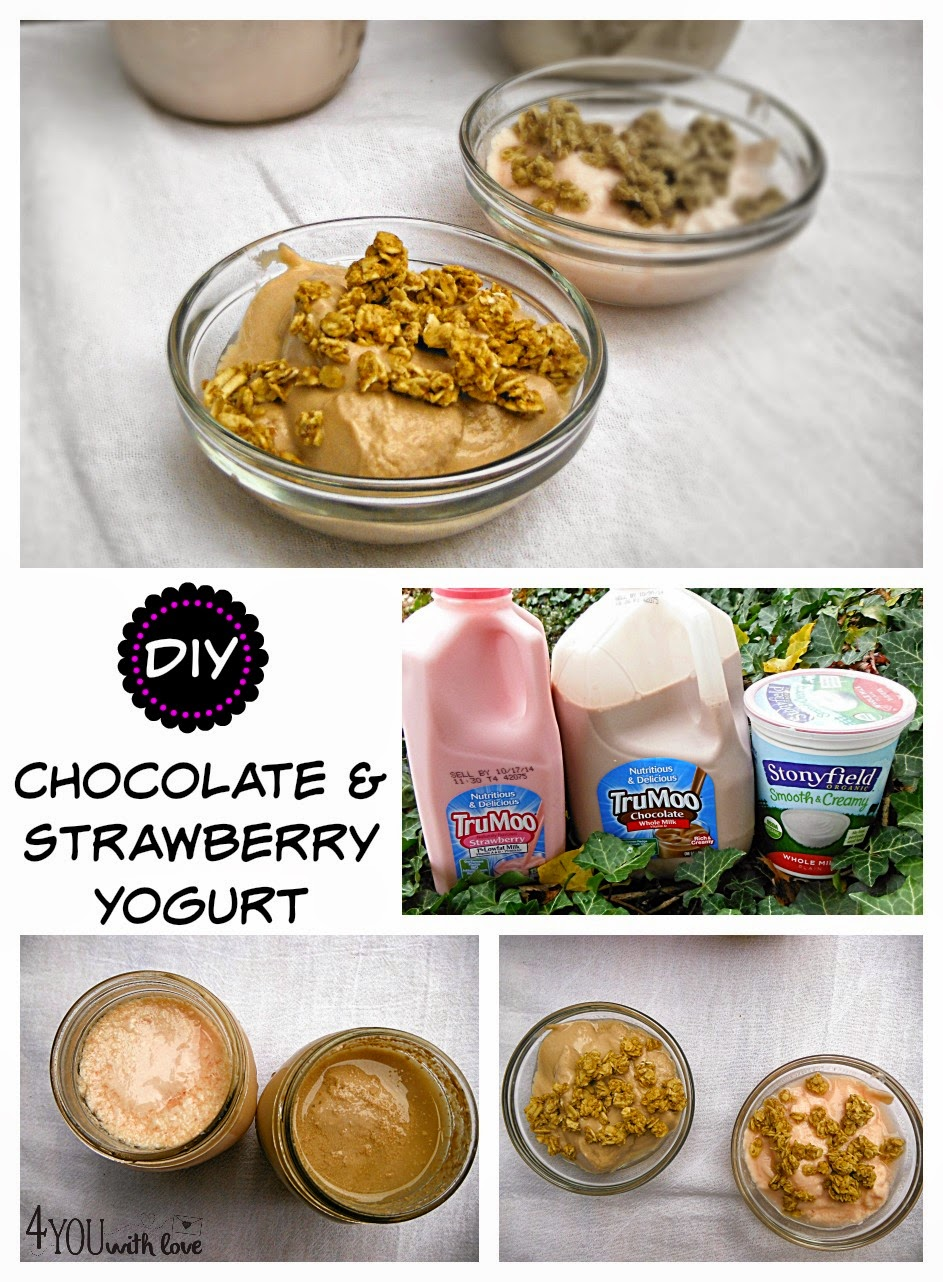 DIY Strawberry & Chocolate Yogurt with #TruMoo
